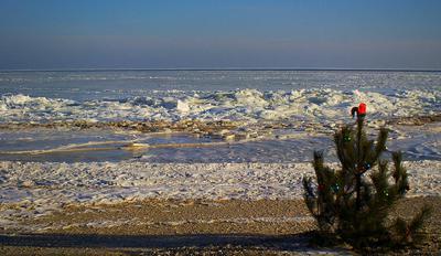 Азовское море замёрзло