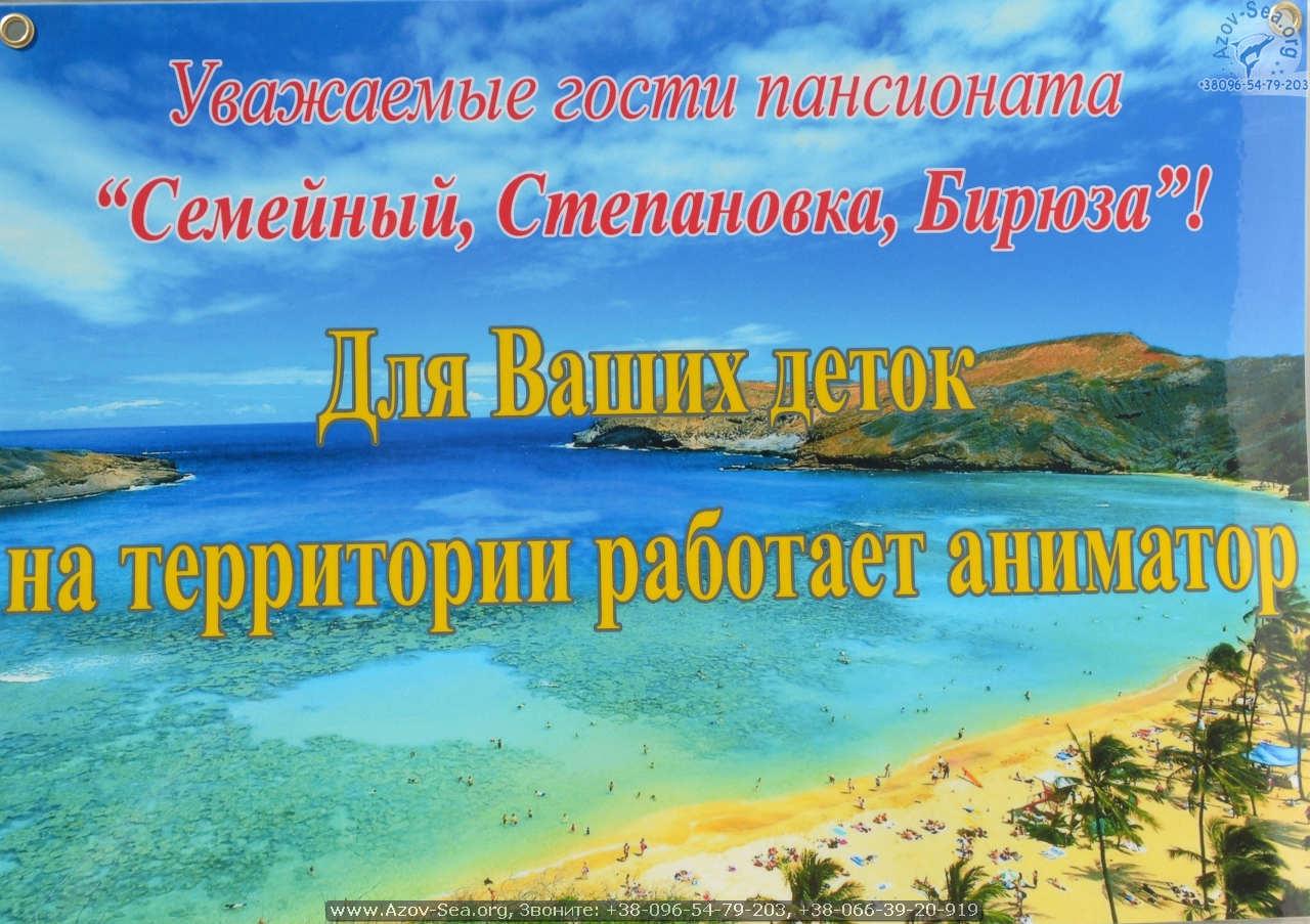 Аниматор. Степановка Первая.