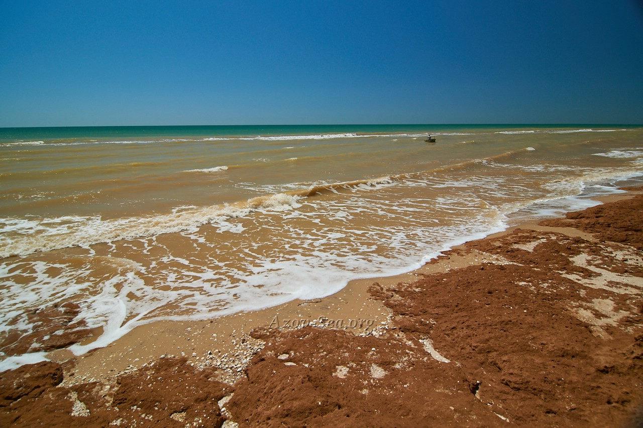 приложениями азовское море фотографии пляжа приходили нам жёлтом